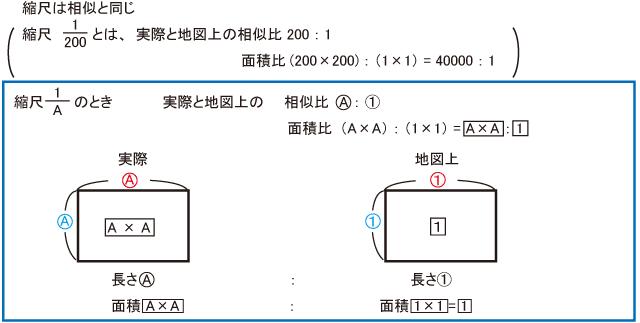 算数】 テーマ別 ポイント集 平...